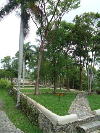 Las Terrazas, Cuba: Cafetal Buenavista