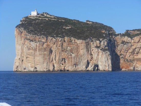 Capo Caccia Vertical Cliffs: Capo caccia