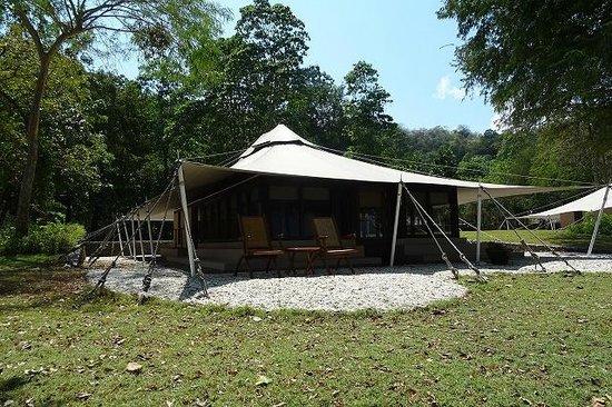 amanwana ocean tents & amanwana ocean tents - Picture of Amanwana Moyo Island - TripAdvisor