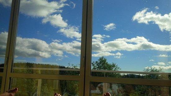 Eder Wohlfühl Hotel: Ausblick aus dem Hallenbad