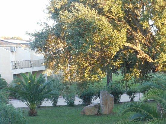 Fiori de Cala Rossa : Giardino
