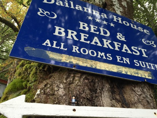 Dailanna Bed and Breakfast: Harry visits the Dailanna :)