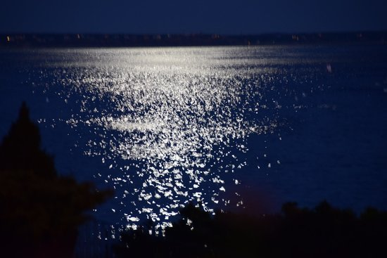 Prince Albert Guest House : Full moon from hotel