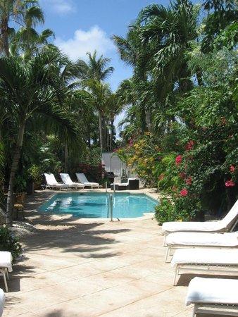 Paradera Park Aruba: Pool and Garden