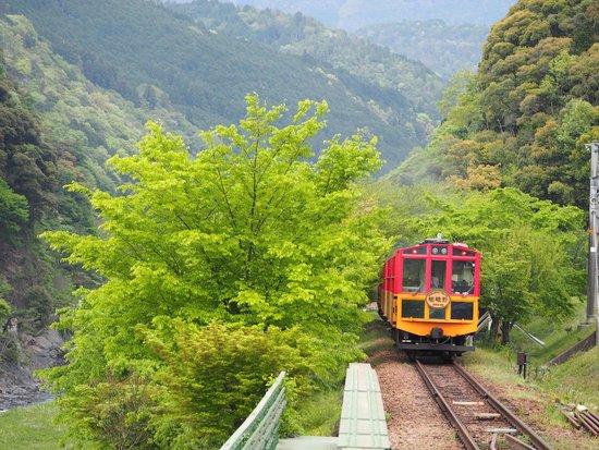岚山嵯峨野观光小火车
