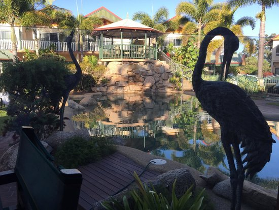 Tinaroo Lake Resort: Overlooking the pool