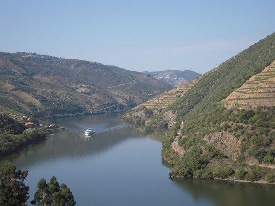 Quinta do Pego : Quinta (vue sur Douro°