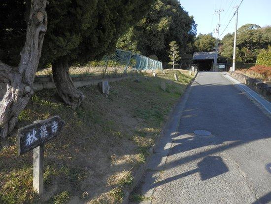 Akishinodera Temple: ここを進むと秋篠寺
