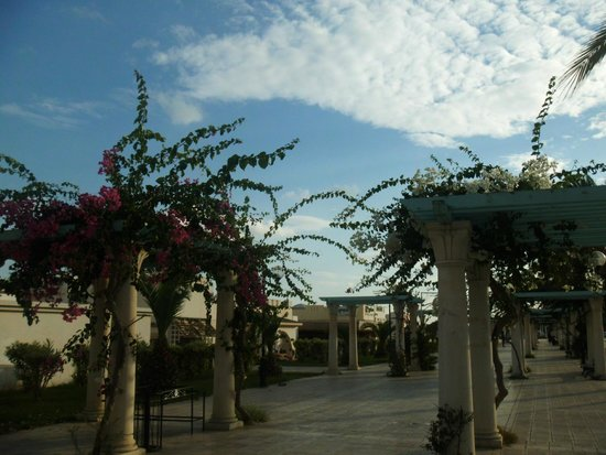 Yasmin Hammamet : walking alley near the marina