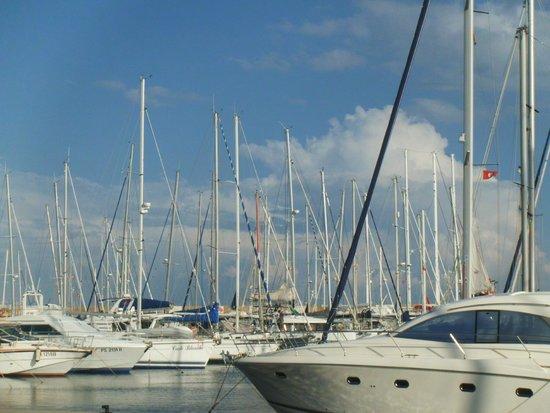 Yasmin Hammamet: marina view