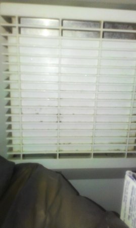 Extended Stay America - Raleigh - Crabtree Valley: Mold in freezer