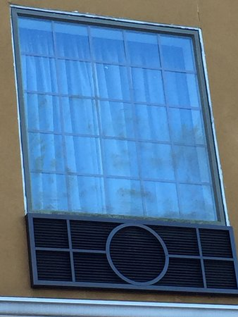 Tampa Stadium Airport Hotel : The outsides of the windows are coated with algae.