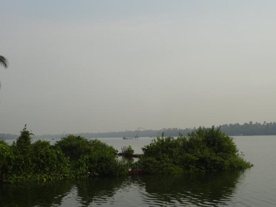 Blue Waters Cherai: backwaters ..near the pool