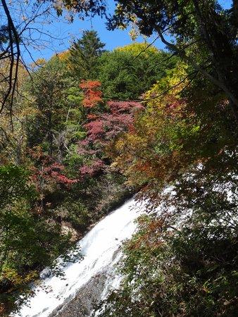 Yutaki Waterfall : 湯滝横の遊歩道(階段)から
