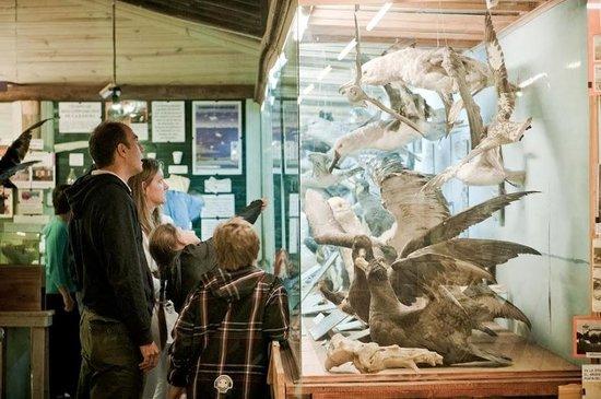 Μουσείο Θαλάσσης