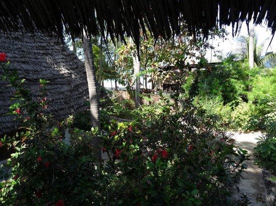 Ndame Beach Lodge Zanzibar: View from room 14
