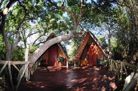Panzi Bush Camp