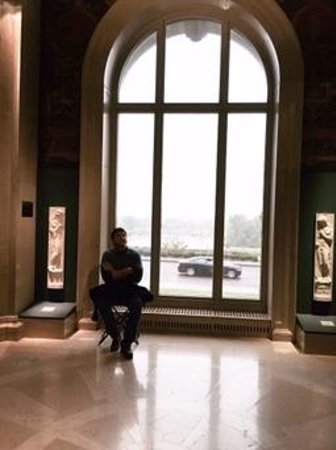 Saint Louis Art Museum: beautiful views of forest park from the art museum
