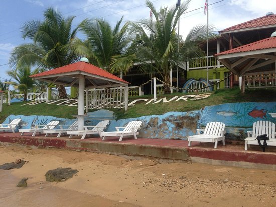 Hotel Los Delfines: Vista del Hotel desde el mar.