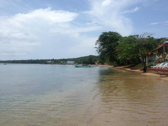 Hotel Los Delfines: La playa frente al Hotel2
