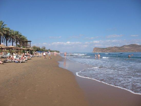 Alexandra Beach Resort : Beach