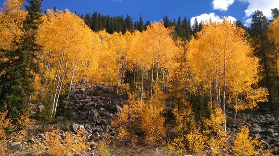 Cottonwood Pass: Wow the colors