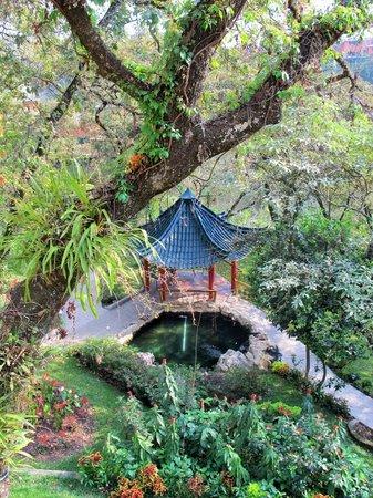 Foto de suites jard n imperial ciudad de guatemala for Jardin imperial
