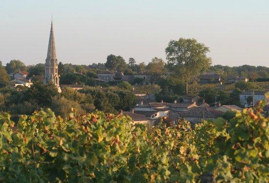 Relais du Chateau d'Arche : View towards Sauternes