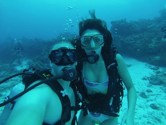 Two D's Diving and Tour Adventures: Two Ds Diving Oct. '14