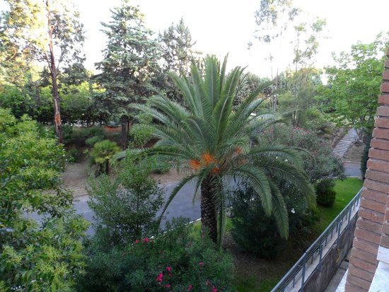 Green Park Hotel Pamphili : Vue of the park from a front room