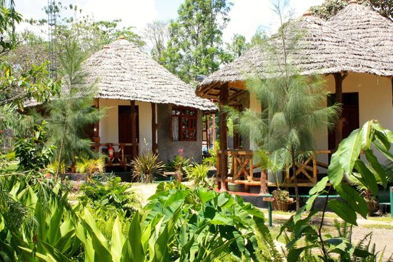 The Vijiji Center Lodge & Safari: Landscaped gardens around guest rooms