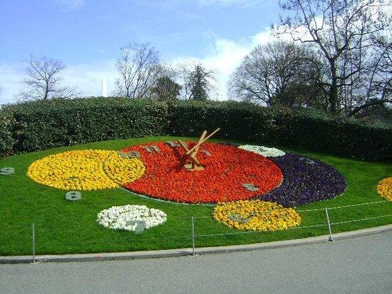 Jardin anglais picture of jardin anglais geneva for Jardin anglais