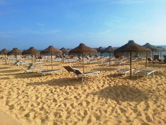 Dom Pedro Portobelo: Vilamoura beach adjacent to Buzios Beach Bar