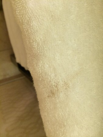 Doubletree by Hilton Detroit Downtown - Fort Shelby: Just one of many brown stains on towels