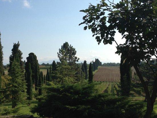 La Casalta: Views from patio area