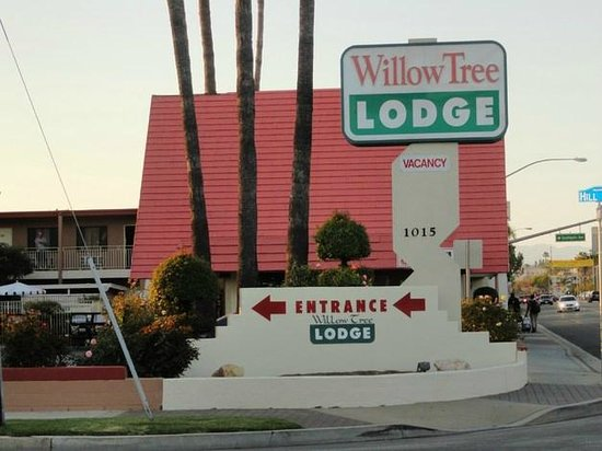 Willow Tree Lodge