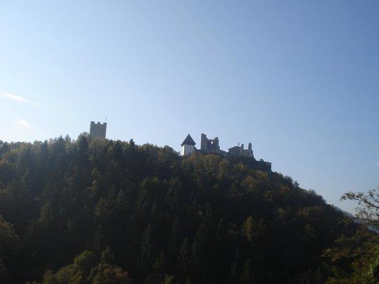 Celje Castle: View of The Old Castle Celje