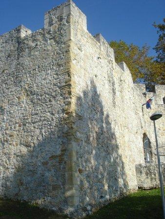 Celje Castle: Outside