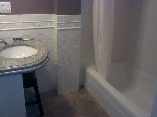 Longwood Inn : Shower to Sink