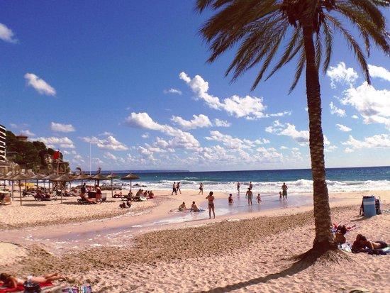 Playa De Cala Mayor The Beach