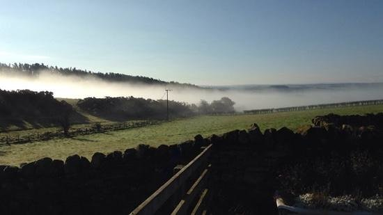 Carr Edge Farmhouse: View from bedroom. Fog on the Tyne