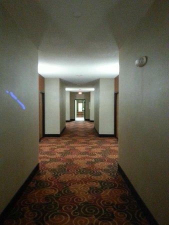 Quality Suites: interior hallway