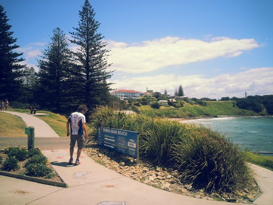 Lennox Head Beach: owners will be fined if they leave dog poo! good!
