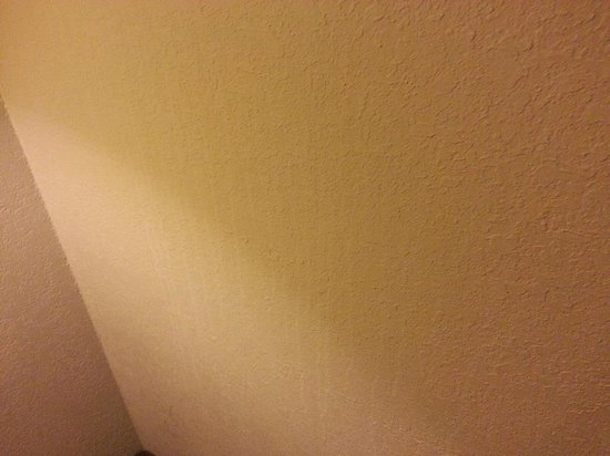 Super 8 by Wyndham Fredericksburg: Example of the stains on the walls