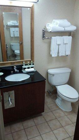 Holiday Inn Express Lawrence / Andover: Clean with no bad smells.