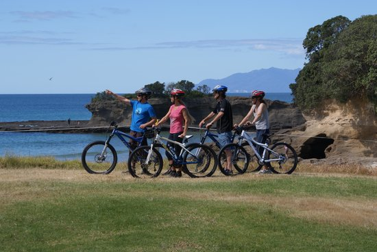 Matakana Bicycle Hire Limited