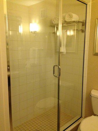 Hilton Garden Inn Jackson Downtown: Shower