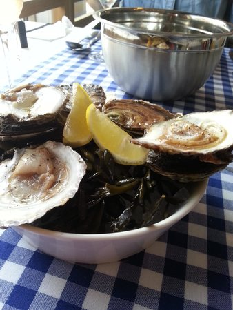 the blue lobster: zeeuwse oesters: the best.