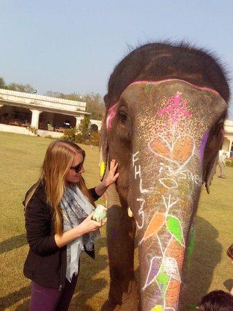 Elephantwala
