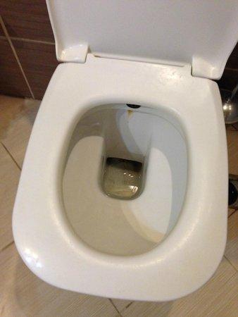 Kozakli, Turkey: tuvalet sapsarı